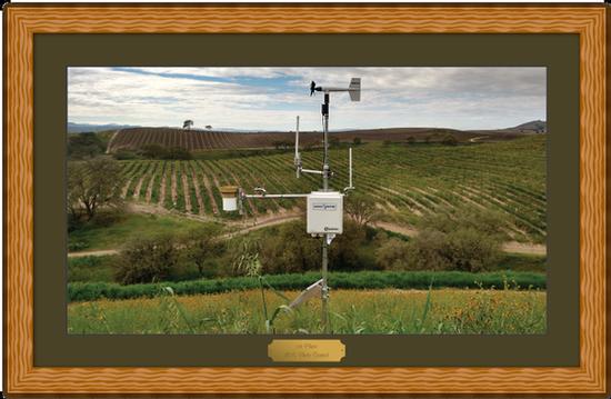 Weather station in vineyard
