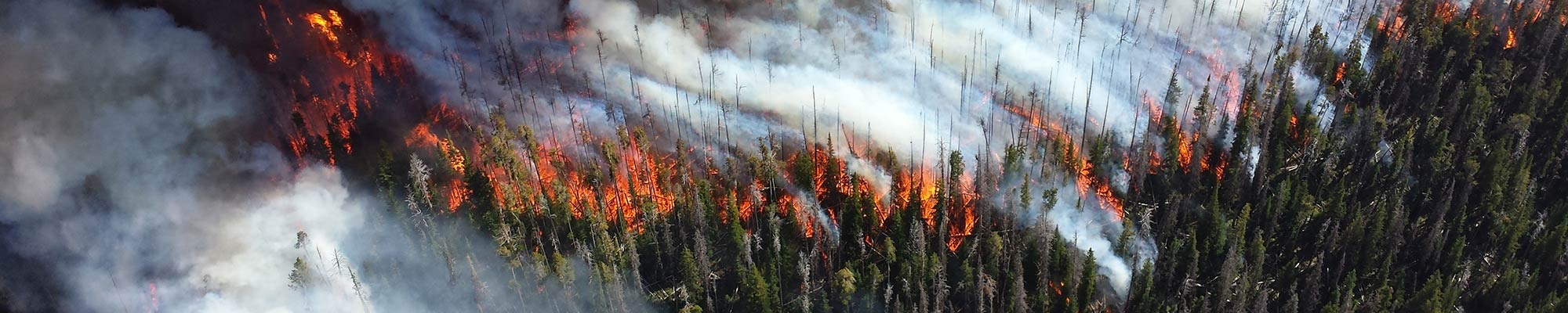 Fire Weather Off-the-shelf fire weather stations or custom instrument systems