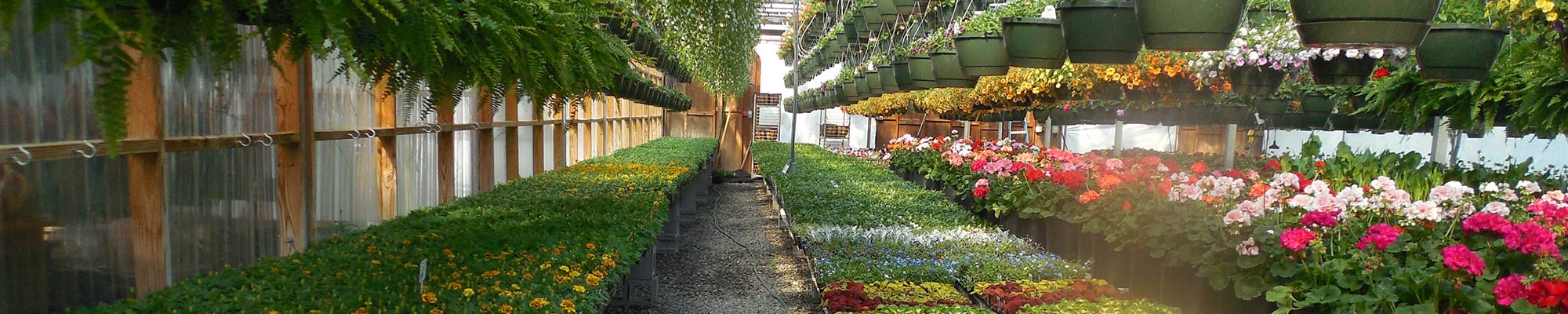 Greenhouses Accurate, versatile systems for controlled growing environments