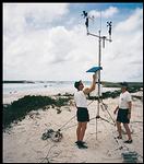 bahamas: marine ecology