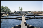 california, stolt sea farm: caviar aquaculture