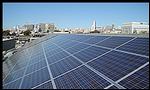 retailer goes solar